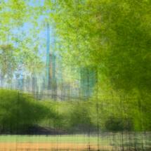 NY-Central-Park-3-Lonicer-2
